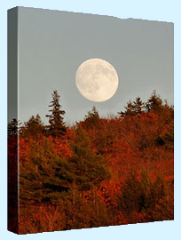 Full Moon over Fall Color on a mountain
